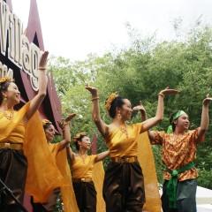 A Taste of Thai Culture at the 2014 Thai Village in Georgetown