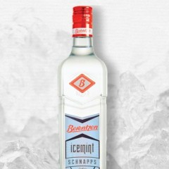 First Look at Berentzen Icemint Schnapps