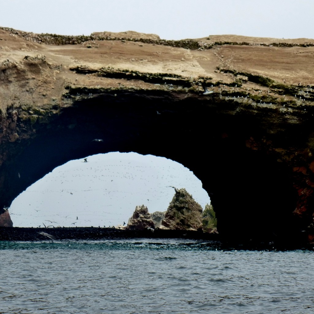 Islas Ballestas - Rock Formation & Birds